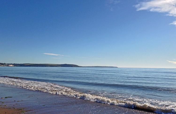 Blue Flag Irish  Beach